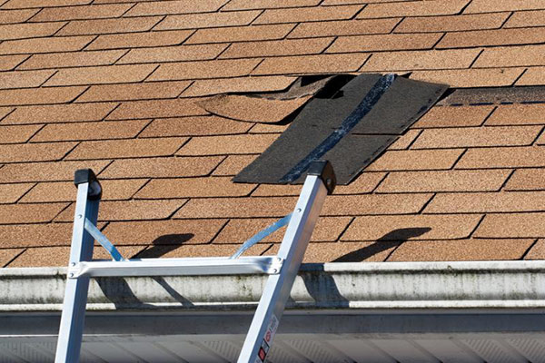 3 Reasons to Call a Professional Roofer